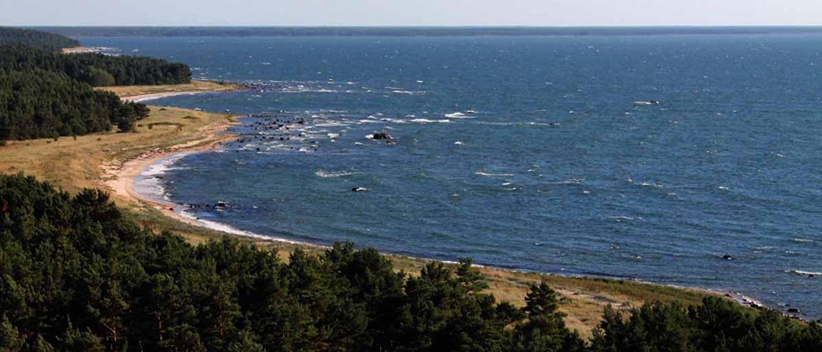 Blick auf die wunderbar schroffe Ostseeküste
