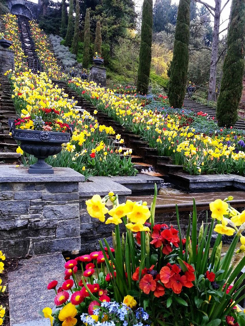 Mainau-italienische-Blumentreppe-Bodensee