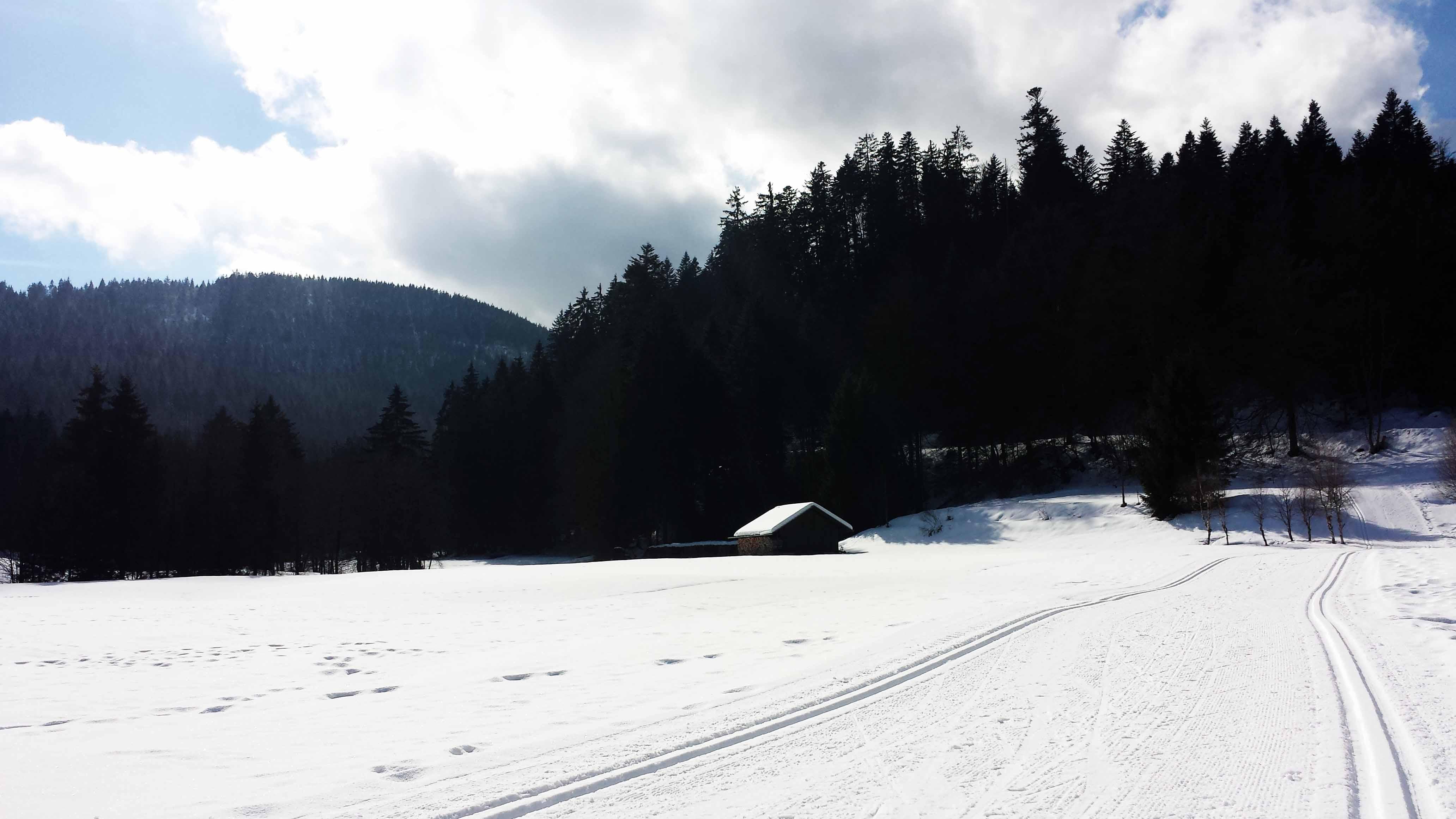 Und in Wirklichkeit ist es noch viel schöner! Ausblick in den traumhaften Märchen-Schwarzwald...