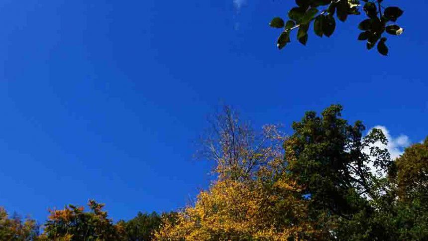 Wochenende in Bildern Oktober